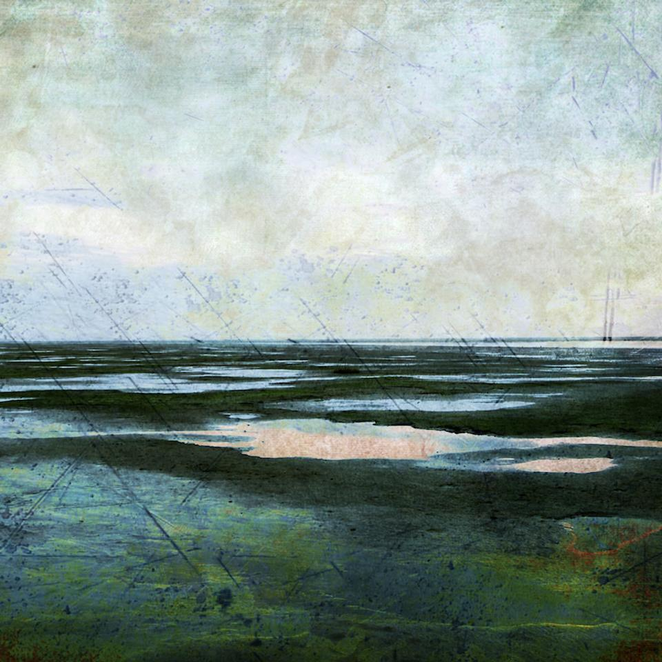 Painting of Friesland shore